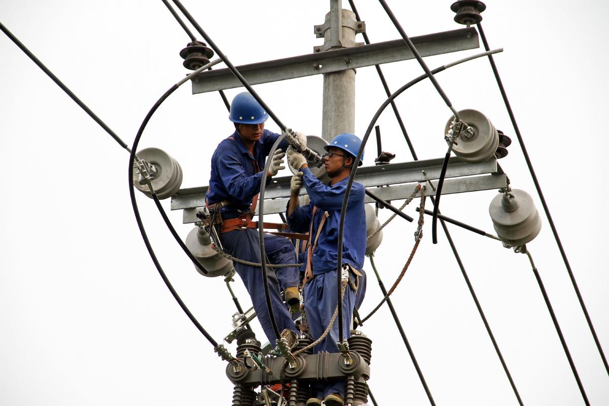 石家庄供电公司-国家电网